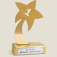 награда Звезда первой величины