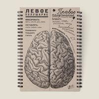 блокнот Мозг