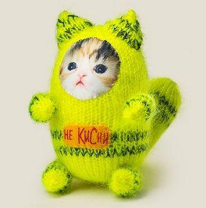 Игрушка котик Не кисни